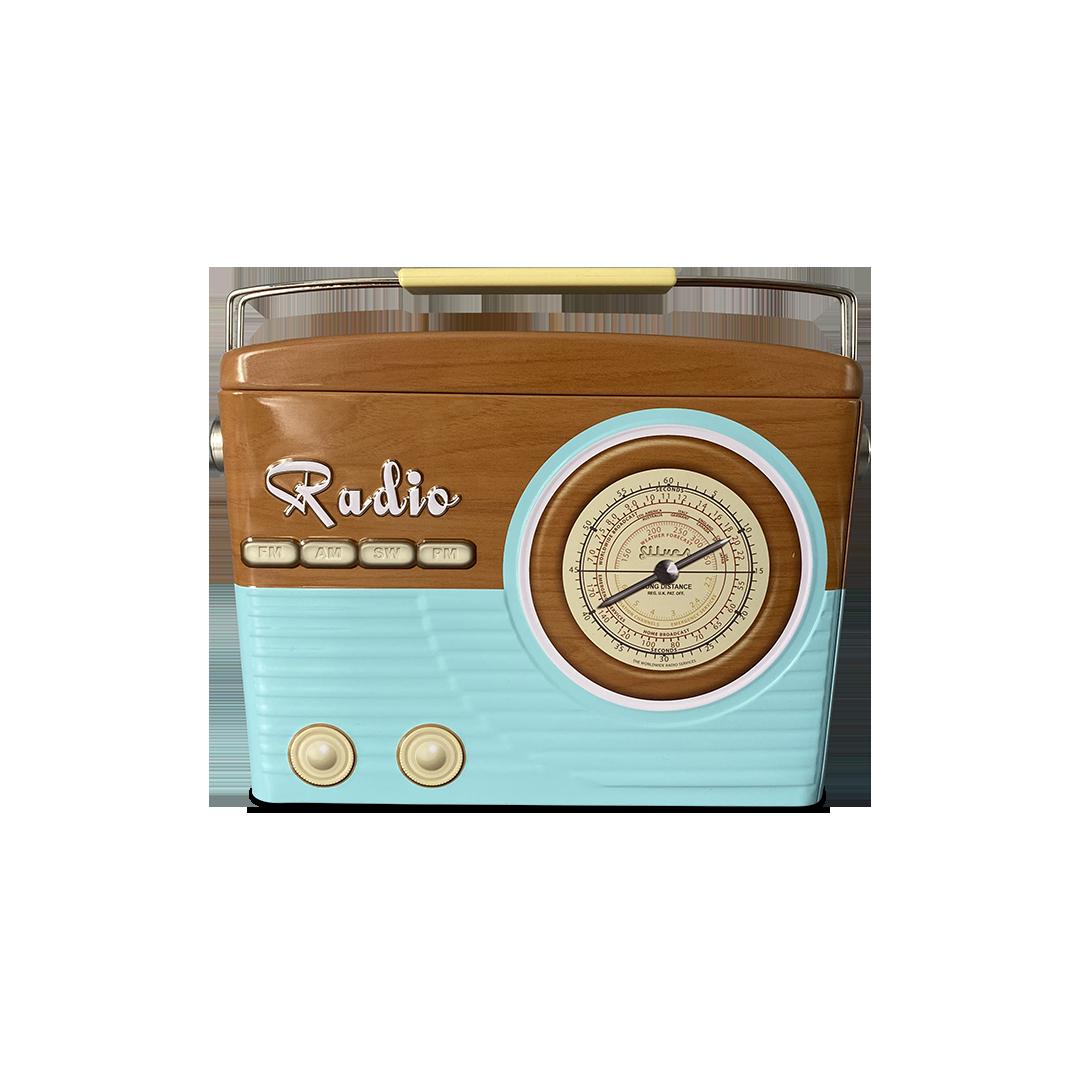 10402 Radio tailliert blau/braun